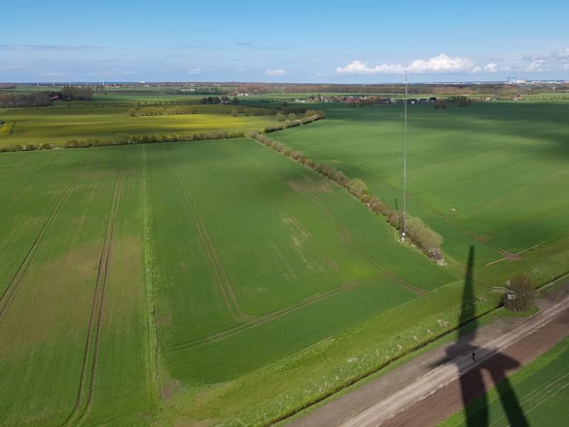 Das Foto zeigt eine landwirtschaftliche Fläche bis zum Horizont und blauen Himmel, auf grünem Acker ist unten rechts im Bild der Schatten einer Windenergieanlage zu sehen.