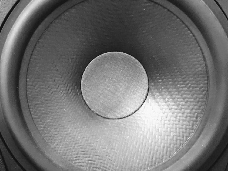 Das Foto zeigt die Kalotte eines Lautsprechers.