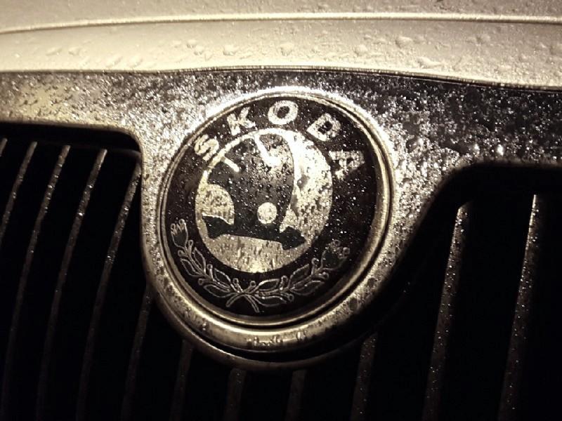 Das Foto zeigt das Emblem des Fahrzeugherstellers Skoda.