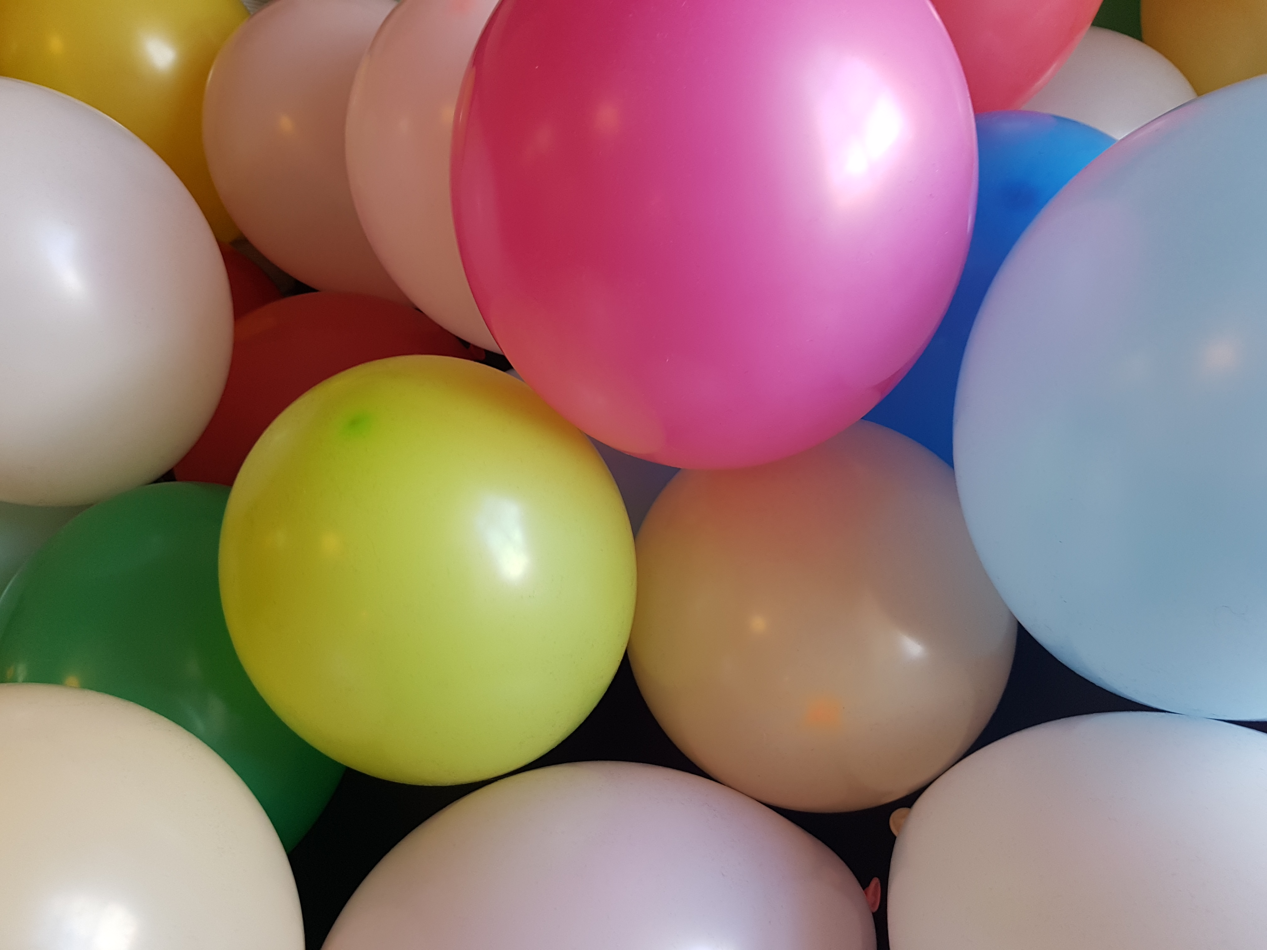 Das Foto zeigt bunte Luftballons.