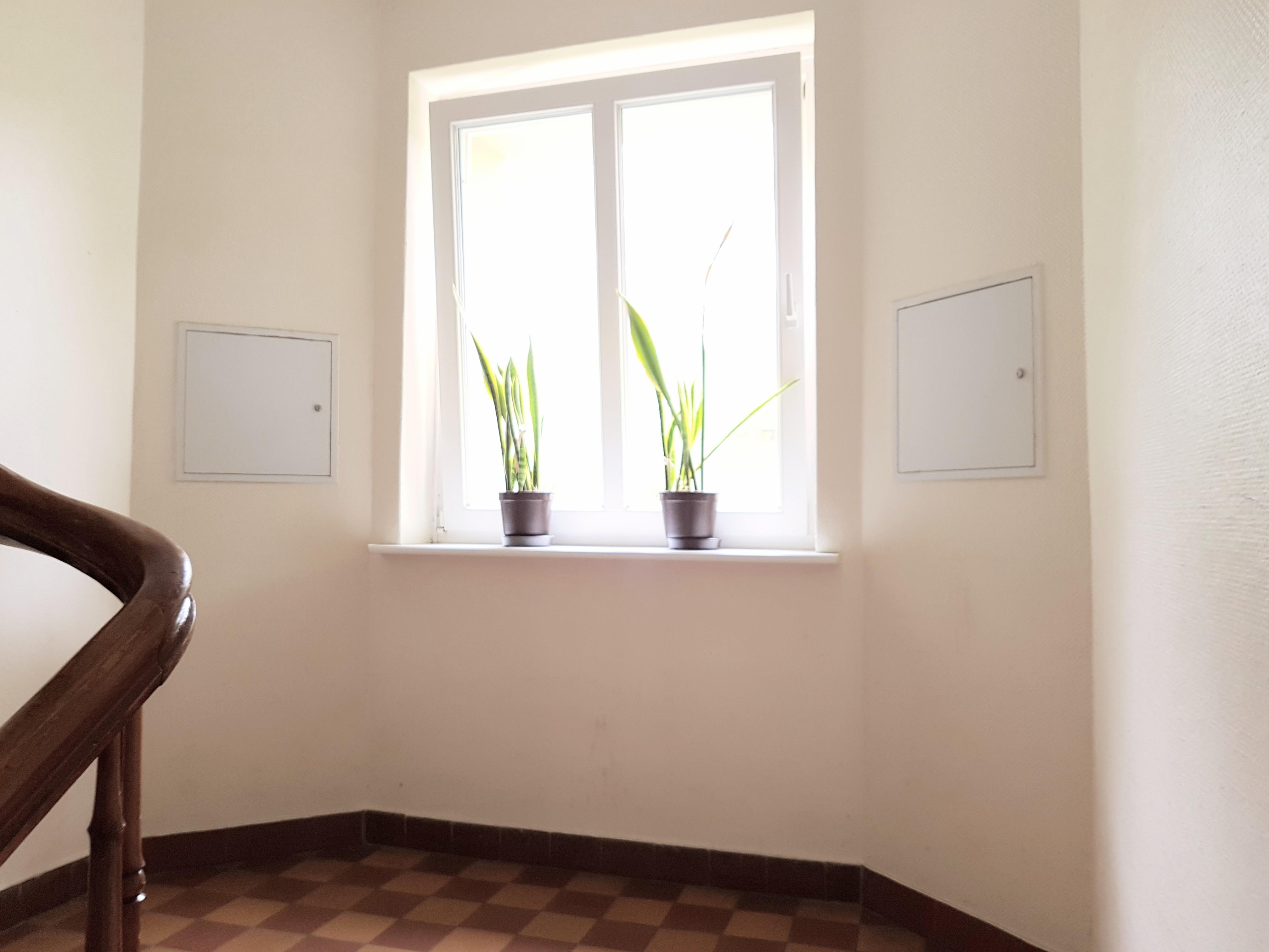 Blick in einen Hausflur auf ein Fenster, auf dessen Fensterbrett zwei Grünpflanzen stehen. Seitlich des Fensters sind links und recht Revisionsklappen zu erkennen, im Vordergrund links sieht man einen Teil eines Handlaufs - hölzern braun.
