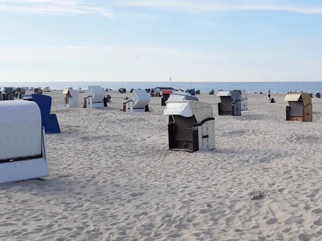 Das Fot zeigt den Strand, auf dem zahlreiche Strandkörbe stehen, im Hintergrund sieht man das Meer.